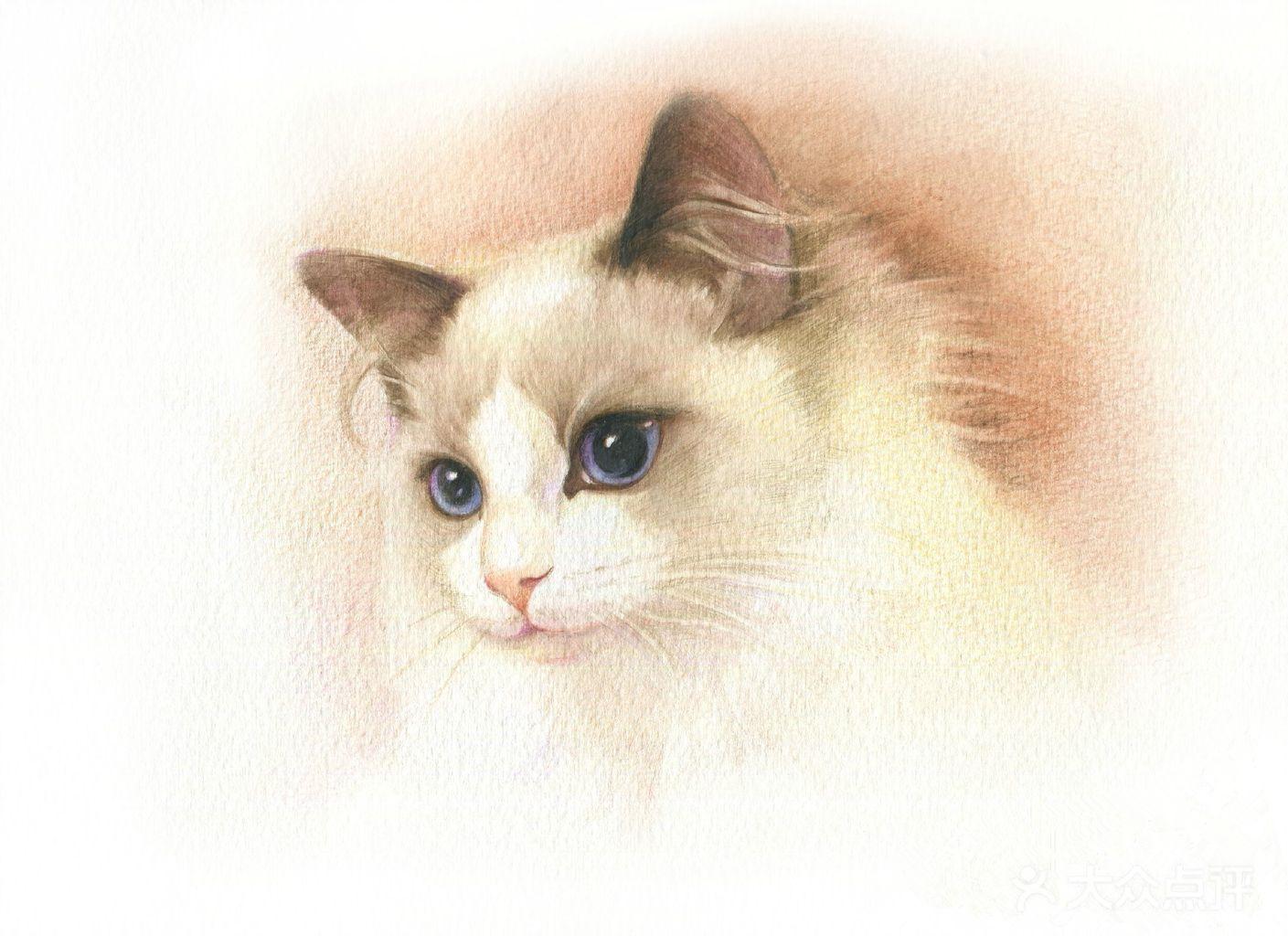 可爱动物彩铅图片