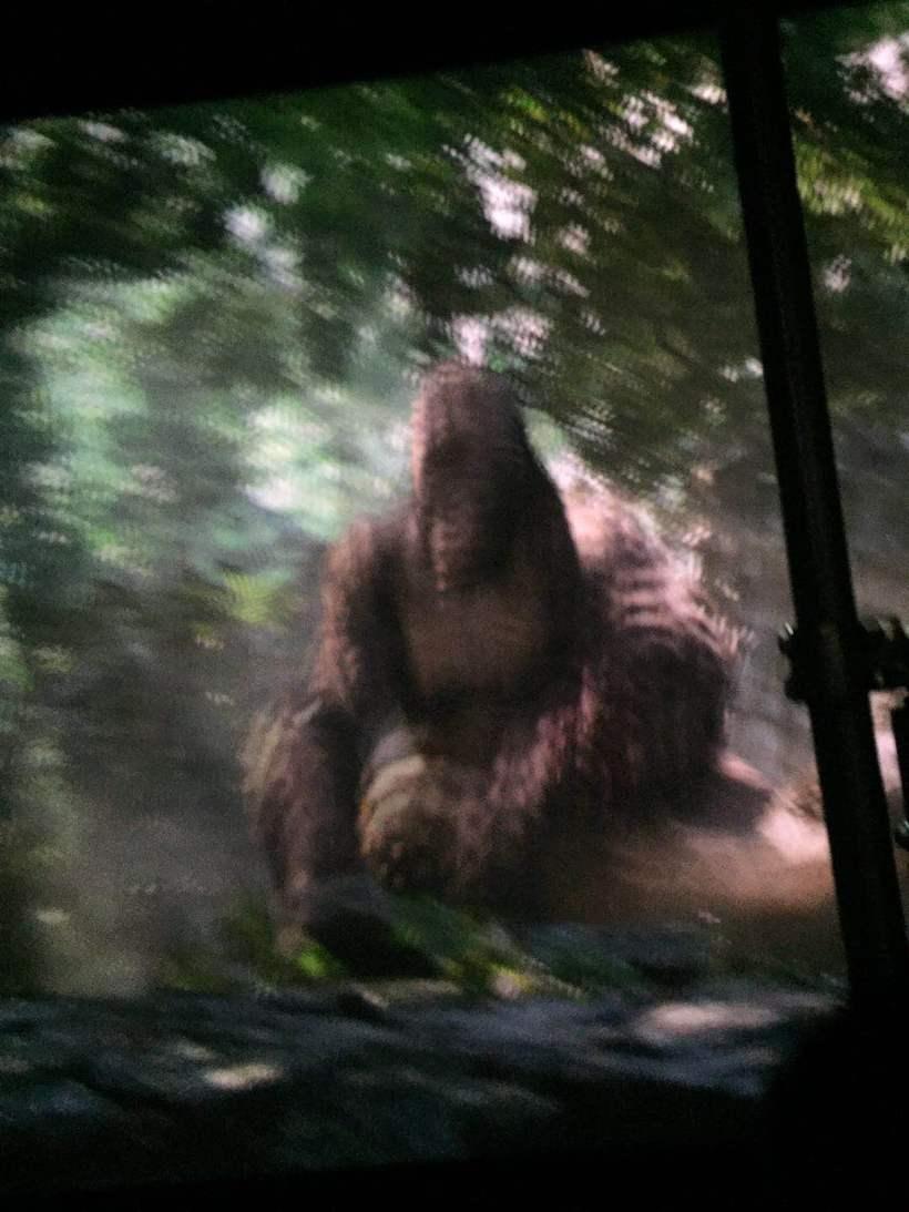 这个人猿泰山也需要戴上3d眼镜,相机拍出来会变成这样.