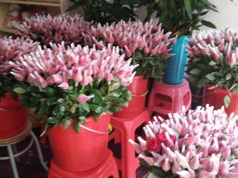慕慕鲜花(贵族鲜花)
