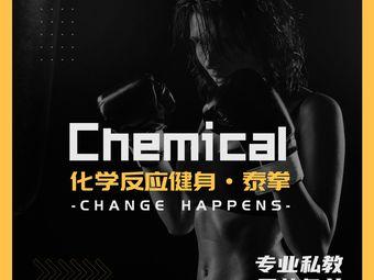 Chemical化学反应健身·泰拳