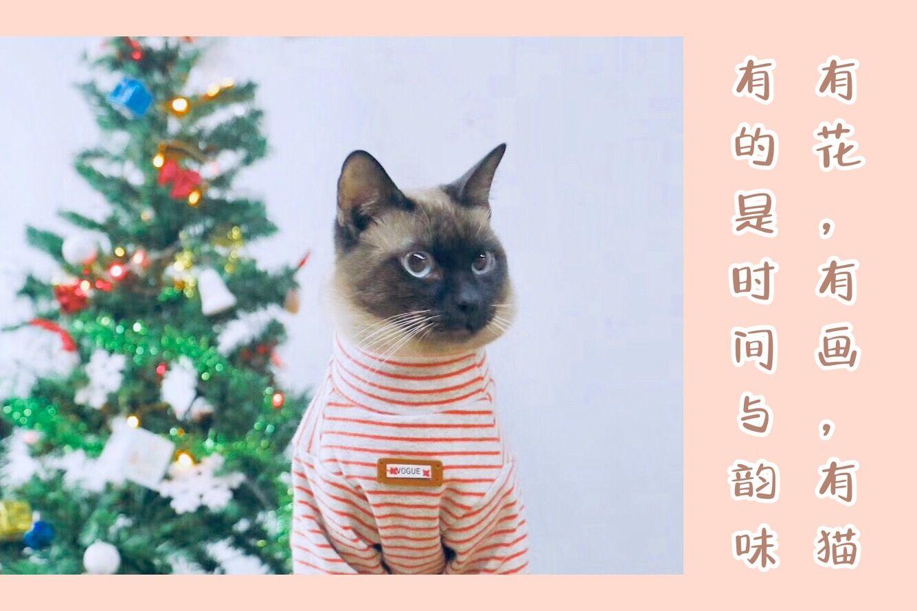 渗透美学·专业美术教学(九眼桥店)