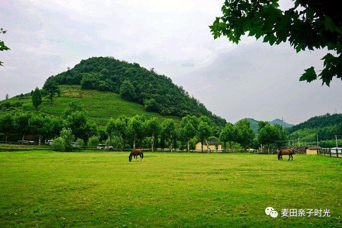 南京周边最美的风景都在这条路上,看山玩水住古村!
