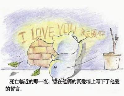 两只小猪的爱情故事(图片版)