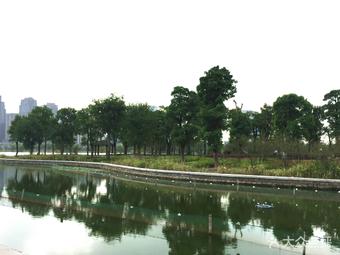 金沙湖公园