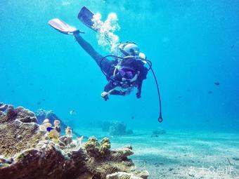 探索潜水俱乐部