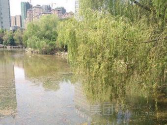 雁家湖植物园