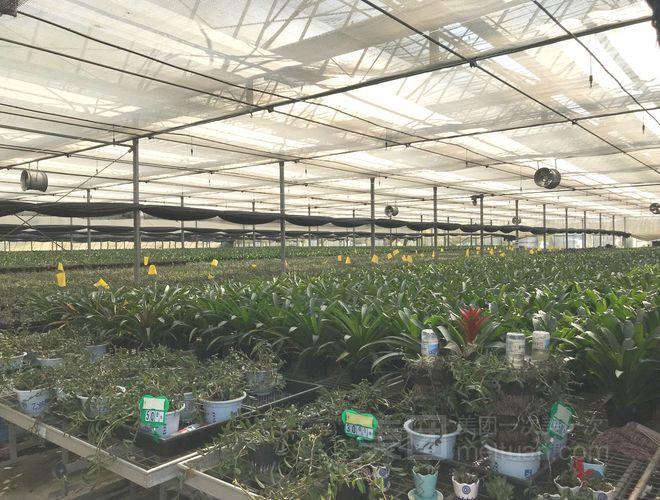 农业生态园设计_临城县绿源农业生态观光园_农业生态农庄项目投资申请建议书