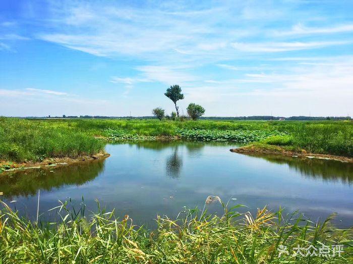 珍珠湖湿地自然保护区图片 - 第6张