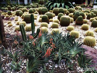 成都市植物园
