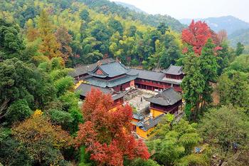 【天台县】华顶国家森林公园成人票-美团
