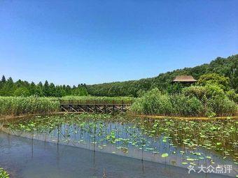 西沙国家湿地公园