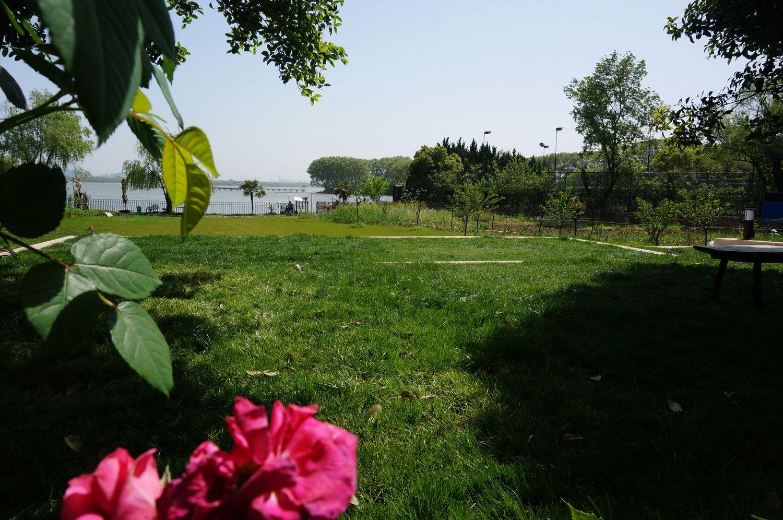 民宿 武汉 东湖风景区 附近民宿  希尔维亚公园共享空间/武汉,洪山