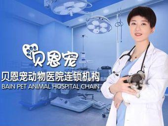 贝恩宠动物医院(红旗街万达店)