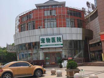 皮大王宠物医院(南通总店)