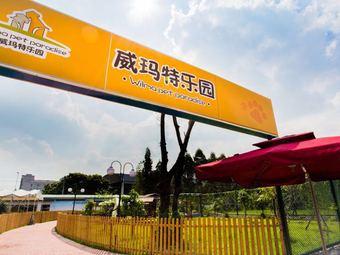 威玛特宠物乐园·竹联庄柴犬舍