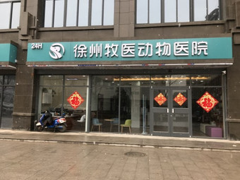 徐州牧医动物医院·心脏彩超·高压氧舱