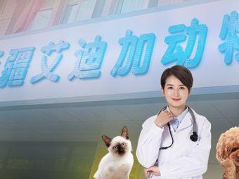 艾迪加动物医院