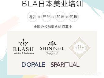 BLA日本美甲美睫皮肤管理培训