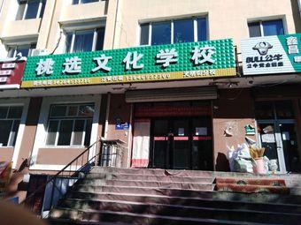 桃选文化学校(光明街分校)