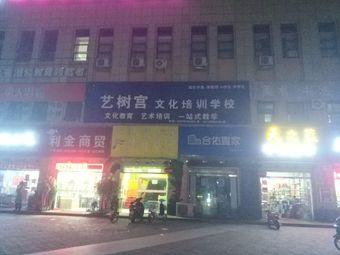 艺树宫文化培训学校