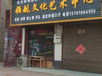 陆老师舞蹈艺术领航文化艺术中心(董村店)