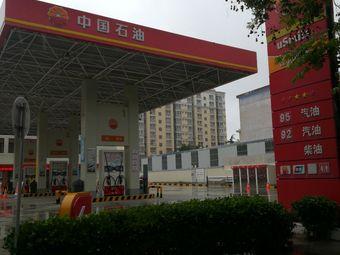 中国石油(南关加油站)