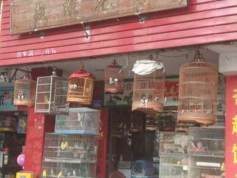 毅缘花鸟店