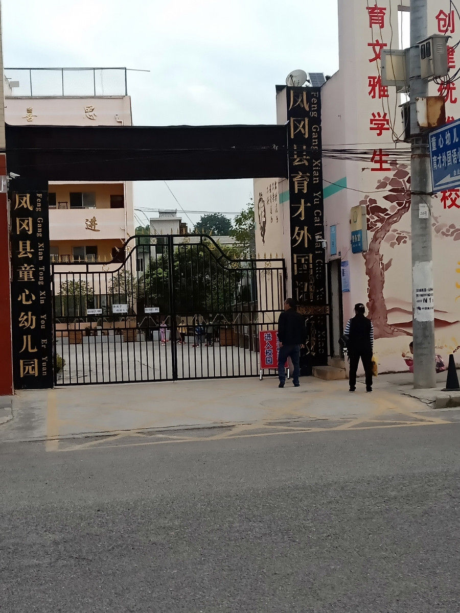 凤岗县童心幼儿园