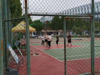 体育公园-室外篮球场
