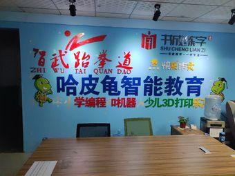 智武跆拳道·哈皮龟智能教育(凤凰城校区)