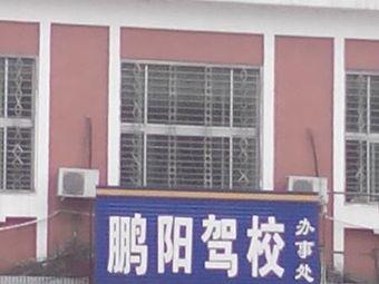 鹏阳驾校办事处