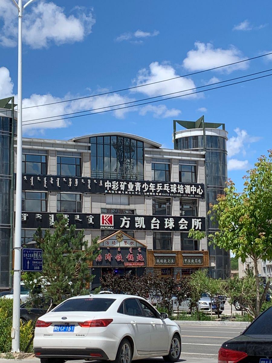 中彩矿业青少年乒乓球培训中心