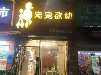 宠宠欲动(南亚店)