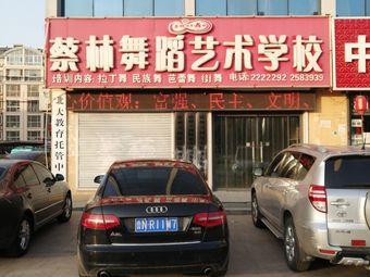 蔡林舞蹈艺术学校