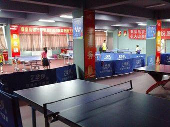 晨希729乒乓球俱乐部(南校区)