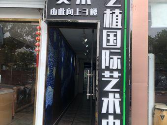 艺植国际艺术少儿中心