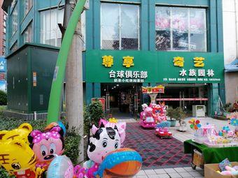 尊享台球俱乐部(国贸店)