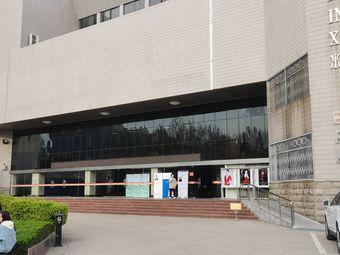 河南大学美术学研究所