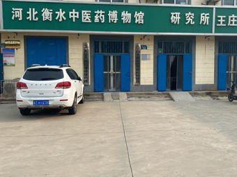 河北衡水中医药博物馆研究所