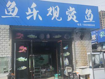 鱼乐观赏鱼馆