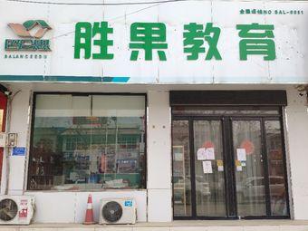 巴仑思胜果教育(NO:BAL-0081店)