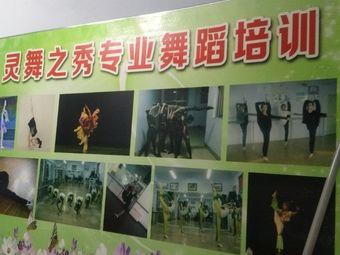 灵舞之秀舞蹈学校