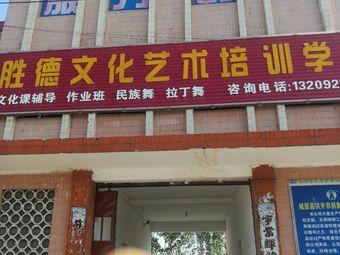 胜德文化艺术培训学校(柳林分校)