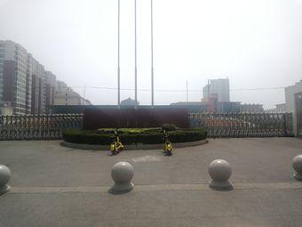 中元体育运动场