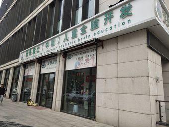 波恩波比(中国)儿童全脑开发