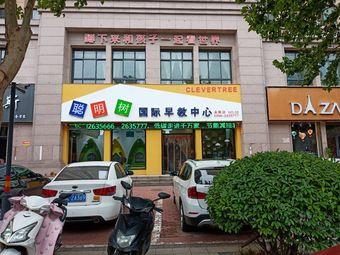 聪明树国际早教中心(会展店)
