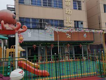 新苗幼儿园(两水路)