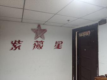紫薇星理疗养生中心(泰安旗舰店)