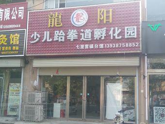 龙阳少儿跆拳道孵化园(七里营镇分馆)