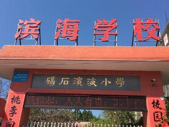 陆丰市碣石滨海学校